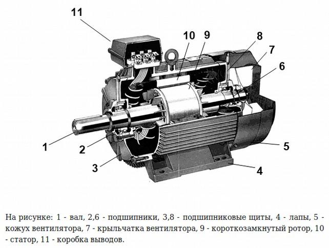 Схема устройства асинхронного мотора